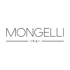 Mongelli, franchise spécialisée en restauration de pizza traditionnelle